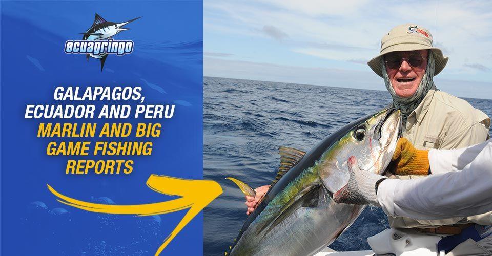 Galapagos ecuador and peru marlin and big game fishing for Fishing in ecuador